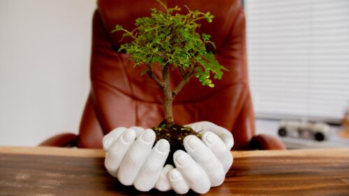 Rexhawood blumentopf haende hold the tree in your hands 25